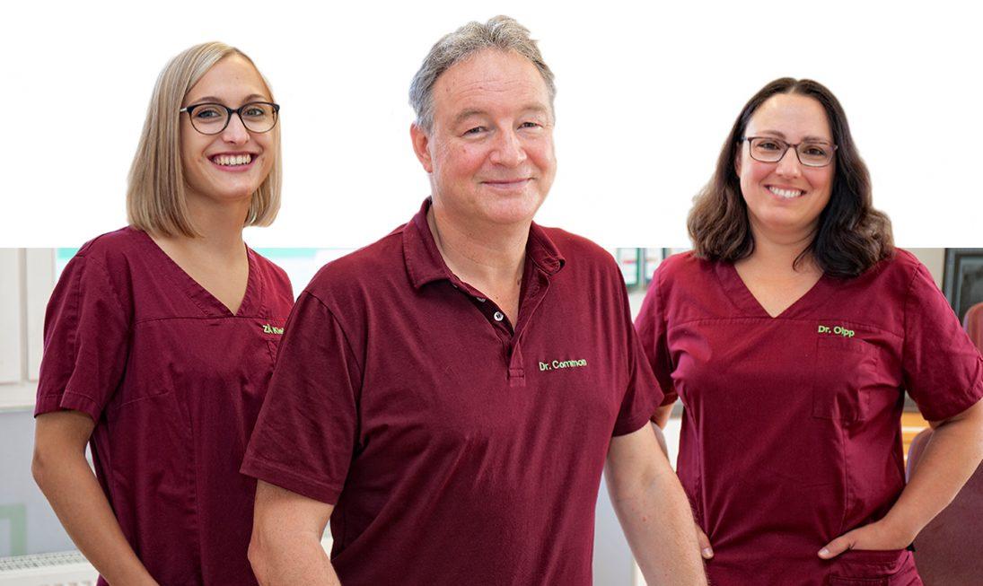 Zahnimplantate Experten in Ötisheim bei Mühlacker